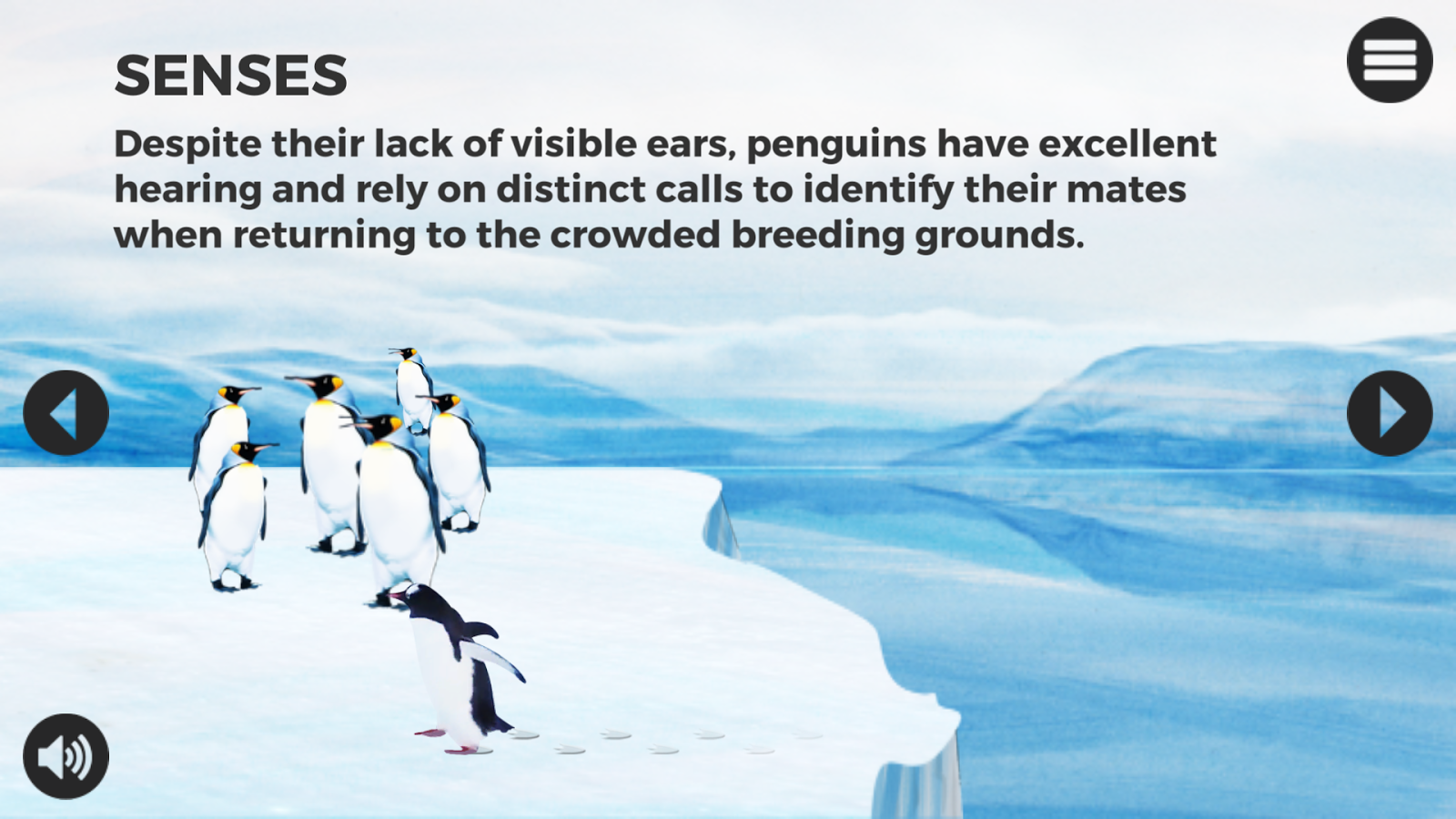 Knowee - Penguins- screenshot