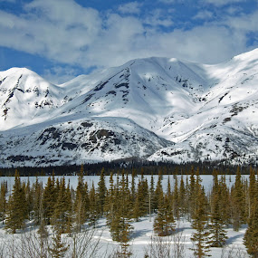 Alaska Winter Playground by Rev Marc Baisden - Landscapes Mountains & Hills ( adventure, mountains, seasons, alaska, travel )