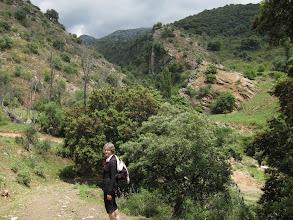 Photo: We reach a little gorge ...