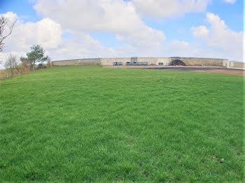 terrain à Orsonville (78)