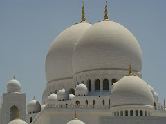 Visiter Mosquée Sheikh Zayed bin Sultan Al Nahyan