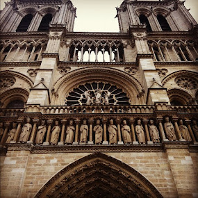 Notre dame by Abi Gilson - Instagram & Mobile Instagram