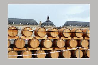 Photo: Fête du vin