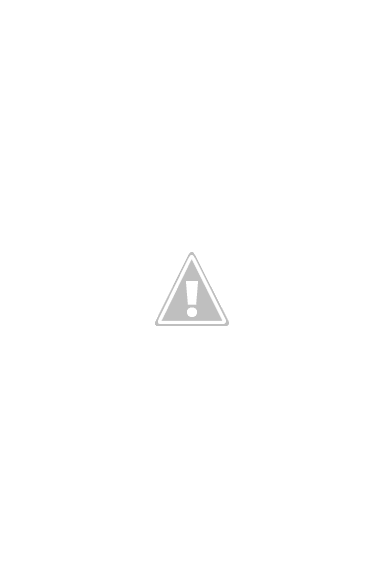 A brave maid and her companion in Haarlem, Holland (2014)