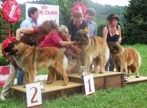 Photo: Le podium : 2ème femke, 1ère Lua, 3ème Iris