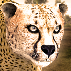 Ultimate Cheetah Simulator