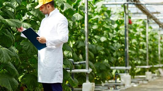 Grupo Agroponiente se vuelca en el desarrollo de un nuevo Departamento de I+D+i
