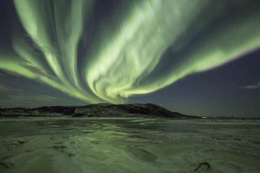 Aurora green by Benny Høynes - Landscapes Starscapes ( winter, green, northern lights, aurora borealis, norway,  )