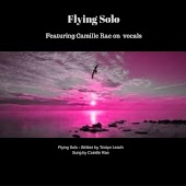 Flying Solo (feat. Camille Rae)