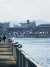 Photo: 中由美子