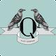 ALSV Quintus APK