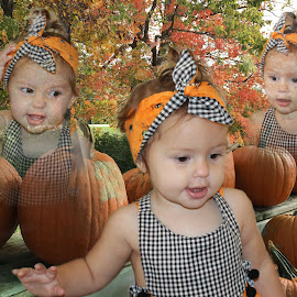 BABY IN THE PUMPKIN PATCH by Mike Zegelien - Babies & Children Toddlers ( pumpkins, toddler, fall, baby, autumn, girl )