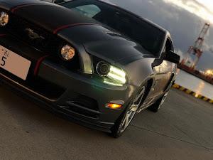 マスタング クーペ  2013y モデル  V8 GTのカスタム事例画像 ケンさんの2018年12月29日11:54の投稿