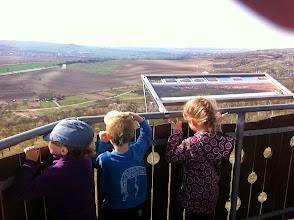 Photo: On the view tower above almond tree orchard.