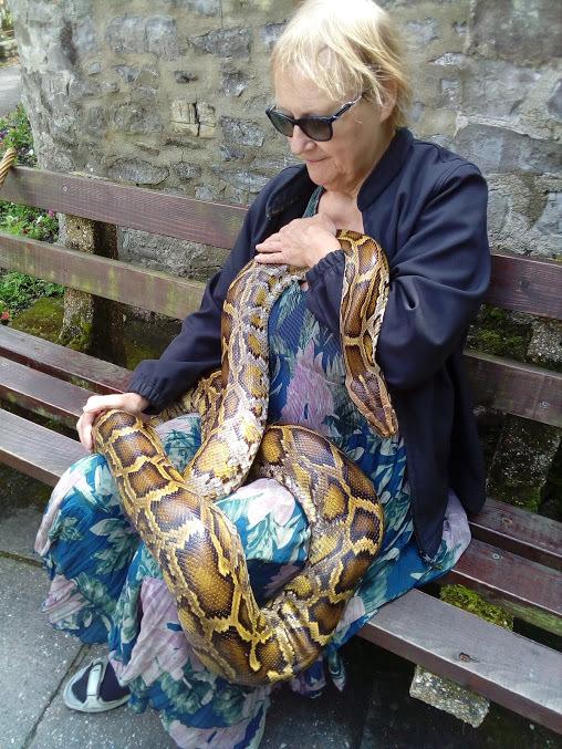 snake-lyme-regis