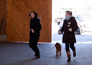 Photo: Bewegung muss in den Hund