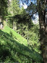 "Photo: Portiunea expusa din apropierea Poienii ""La Verdeata"" - e mai periculoasa in realitate decat pare in poza :)  Blog post: http://l.blog.iacob.name/2016/07/poiana-la-verdeata-costilei-caminul-alpin.html"