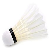 Badminton Match Log