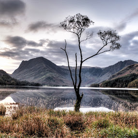 The still lake by Lee Sutton - Landscapes Mountains & Hills