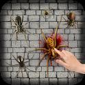 Spider Smasher 2D icon