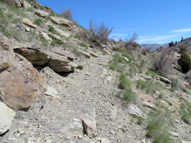 Narrower trail nearing a ridge