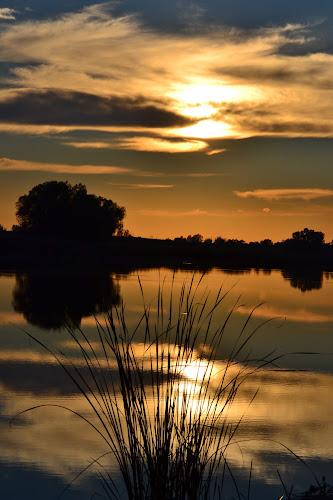 Sunset at lake by Vanja Vidaković - Novices Only Landscapes ( vukovar, sunset, croatia, lake, golden )
