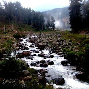 Natural Beauty by Amalendu Saha - Landscapes Mountains & Hills ( hills, nature close up, river )