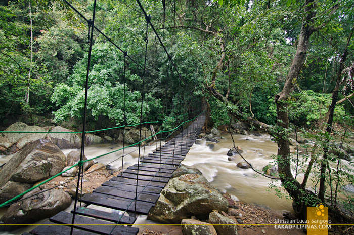 Ella Jungle Resort Sri Lanka Hanging Bridge