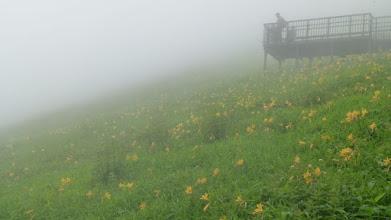 Photo: 霧の霧降