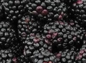 Blackberry Mint Iced Tea