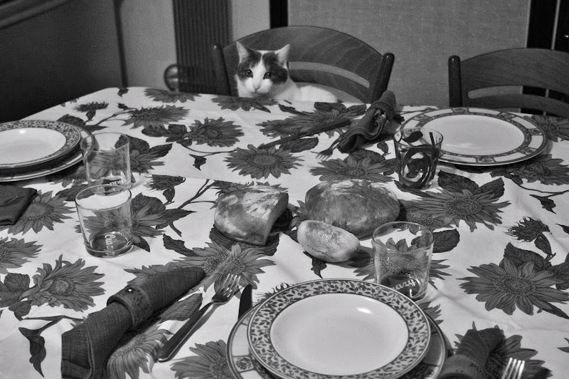 Dov'è il mio piatto? di DMax