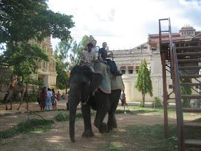Photo: Chris Aniszczyk, Wassim Melhem riding elephant in India