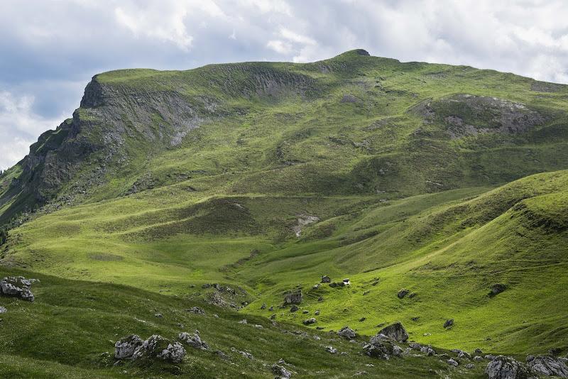 Verdi Dolomiti di ZampMatt88