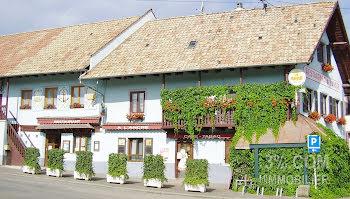 locaux professionels à Waltenheim-sur-Zorn (67)