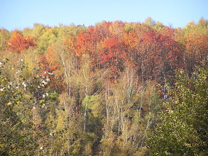 Photo: DA190403 Dolina Kobylanska - jesien