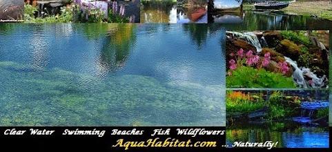 Photo: The Spring Creek sampler of waters