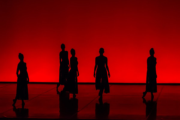 Le bellezze oscure della danza...