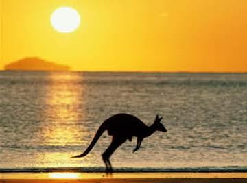 Australian down under good tucker