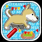 柴犬ムギ - 水中リレー世界大会への挑戦