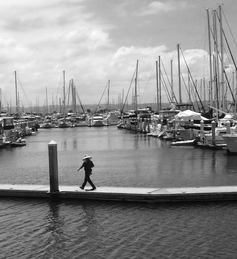 Marina in Chula Vista, California by Eric Michaels - Black & White Landscapes ( water, clouds, walking, afternoon, black and white, boats, determination, human figure, marina, man, masts,  )