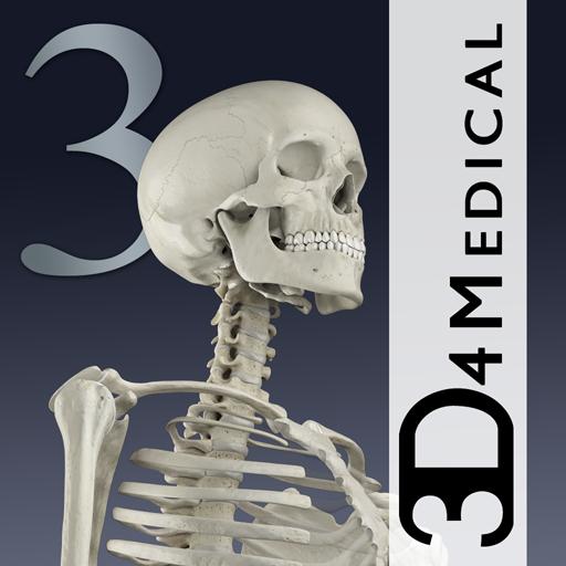 Essential Skeleton 3 (app)