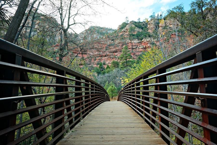 Oak Creek Bridge by Crispin Lee - Buildings & Architecture Bridges & Suspended Structures