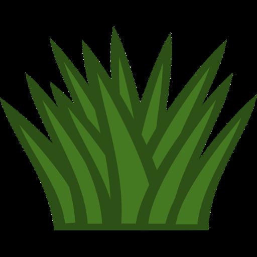 Perennial herbs APK