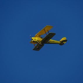 Yellow by Mark Luyt - Transportation Airplanes ( blue sky, airplane, yellow, bi-plane, clear day,  )