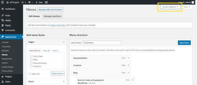 Screenshot of how to add CSS to your WordPress menu