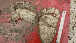 Big Foot thumbnail