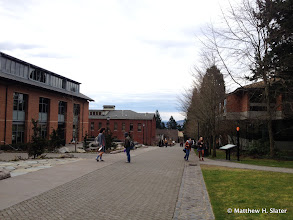 Photo: on Lewis and Clark campus