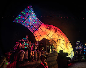 Photo: Here is one of the most beautiful of the art cars that roamed through the desert at night. Underneath a thin sheet of plastic were thousands of LEDs, each programmed to follow an ever-changing pattern of flowing light and colors...