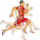 Download آموزش ورزش دومیدانی For PC Windows and Mac