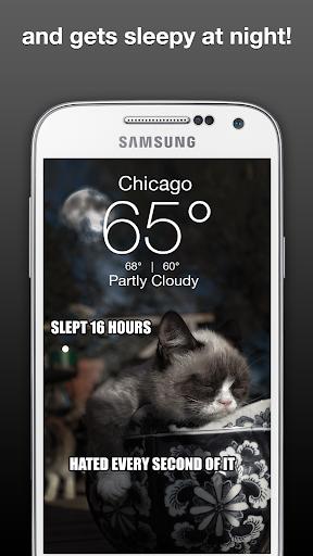 Grumpy Cat Weather Screenshot